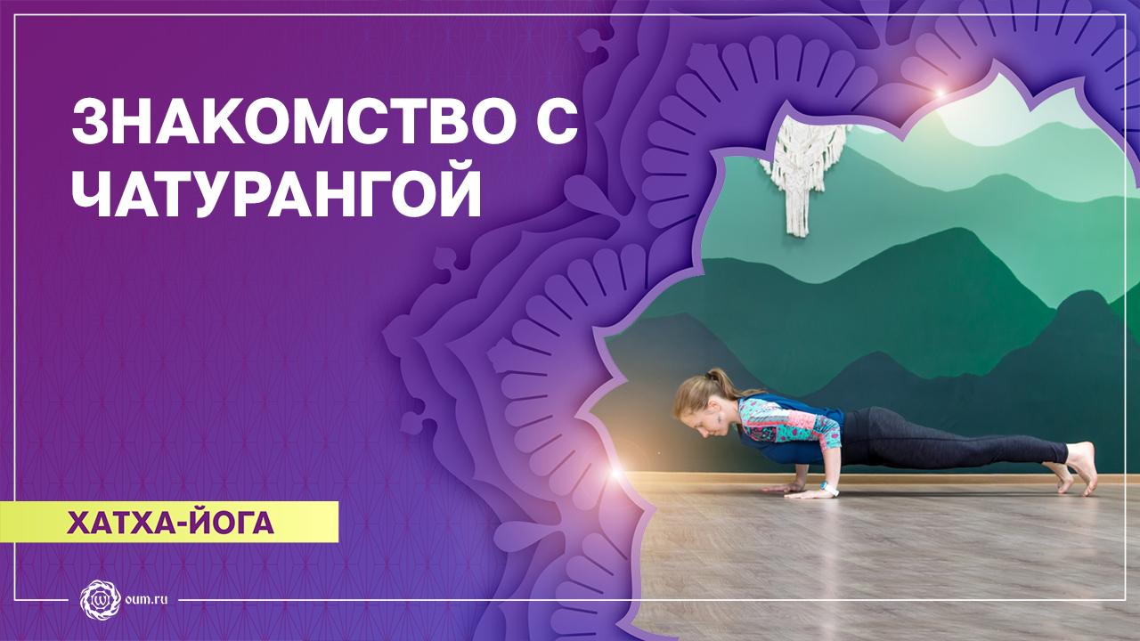 Практика йоги на освоение Чатуранга дандасаны. Алёна Чернышова
