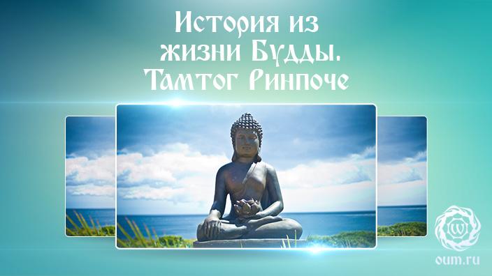 История из жизни Будды. Тамтог Ринпоче