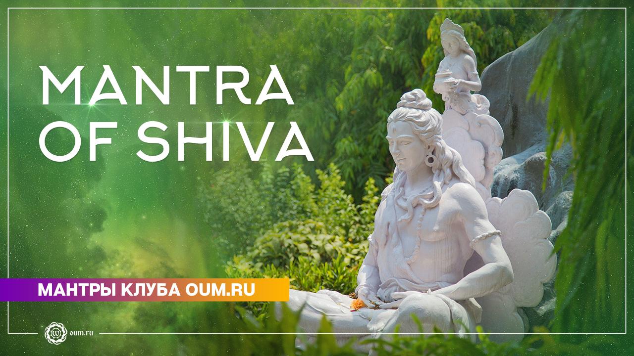 Mantra of Shiva - Daria Chudina