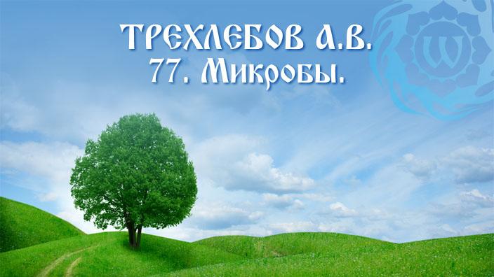 А.В. Трехлебов - 77 - Микробы.