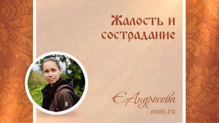 Жалость и сострадание. Екатерина Андросова