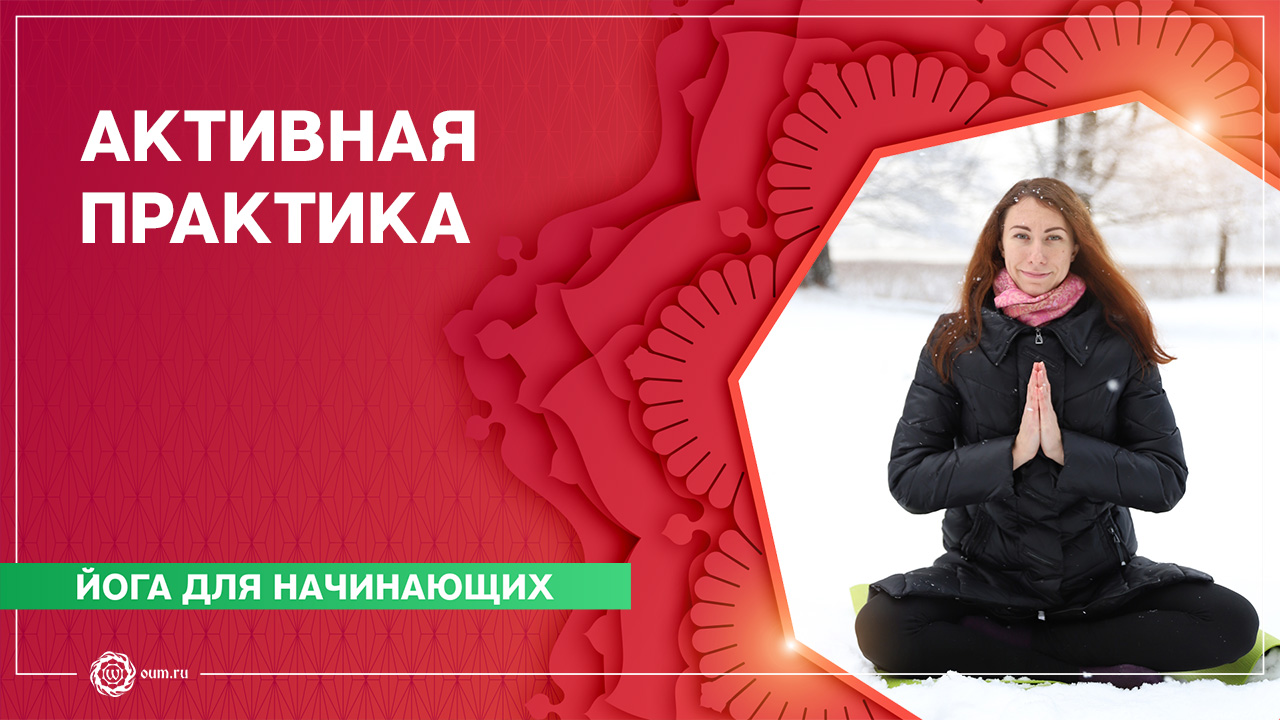 Йога для начинающих. Активная практика. Екатерина Кнышова