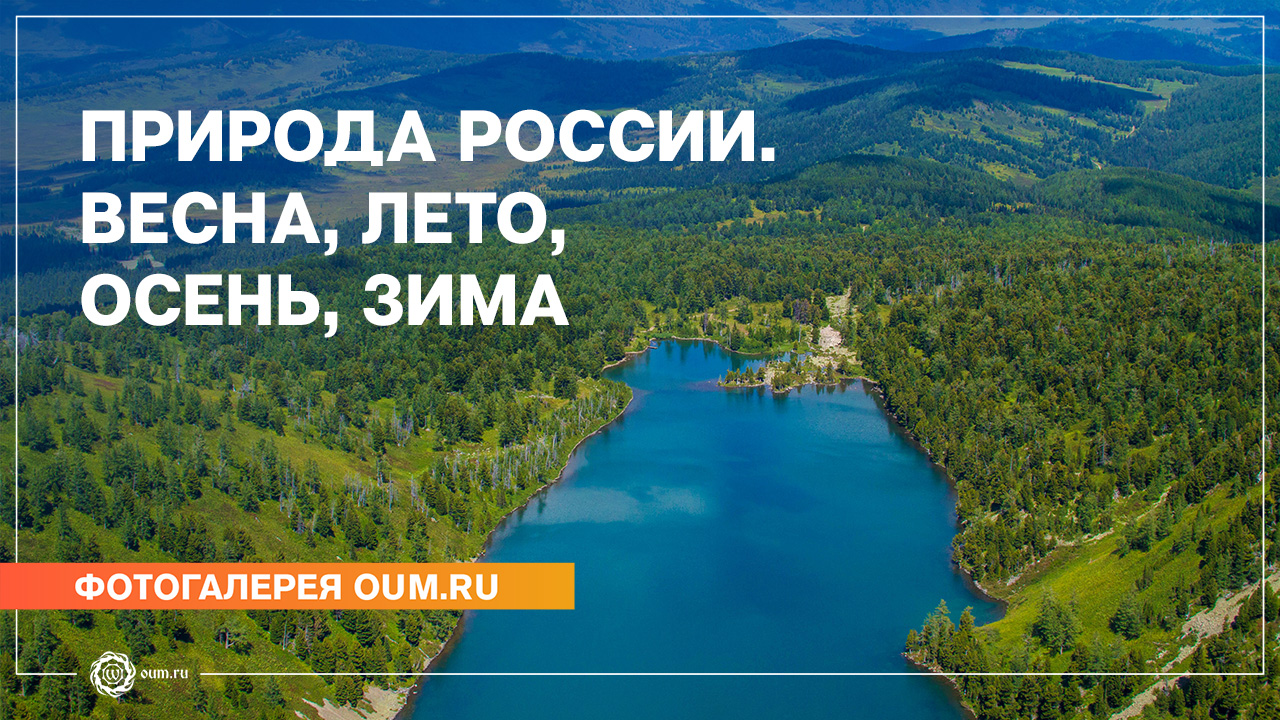 Природа России. Весна, лето, осень, зима
