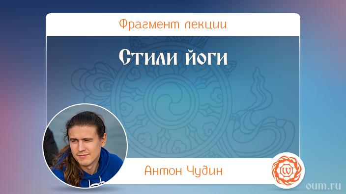 Стили йоги. Антон Чудин
