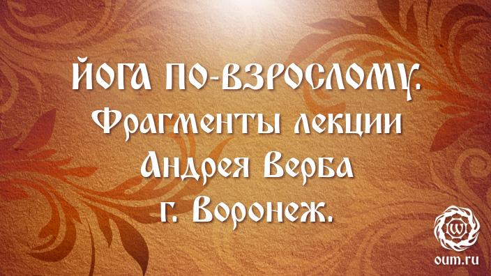 Йога по-взрослому. Фрагменты лекции Андрея Верба. г. Воронеж.